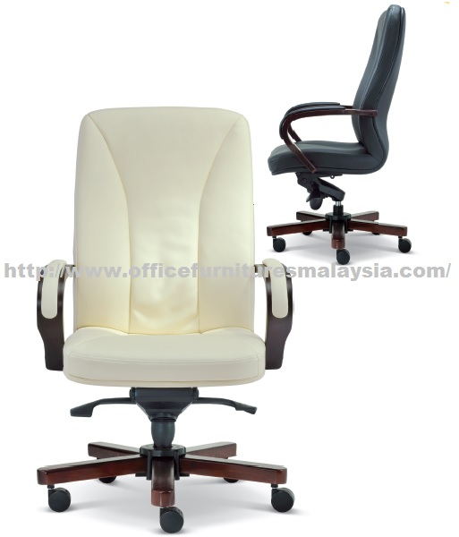 Executive Fortune Mediumback Chair Largest Office Home